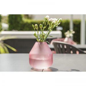 Váza-Fjella-a